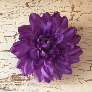 PurplePlateDahlia